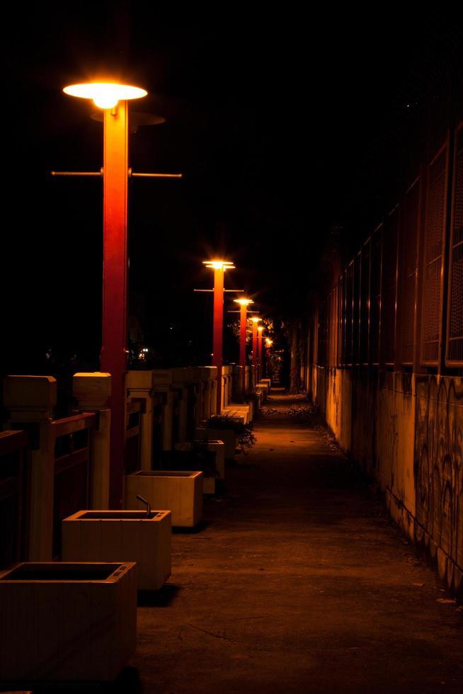 luci sul sentiero foto