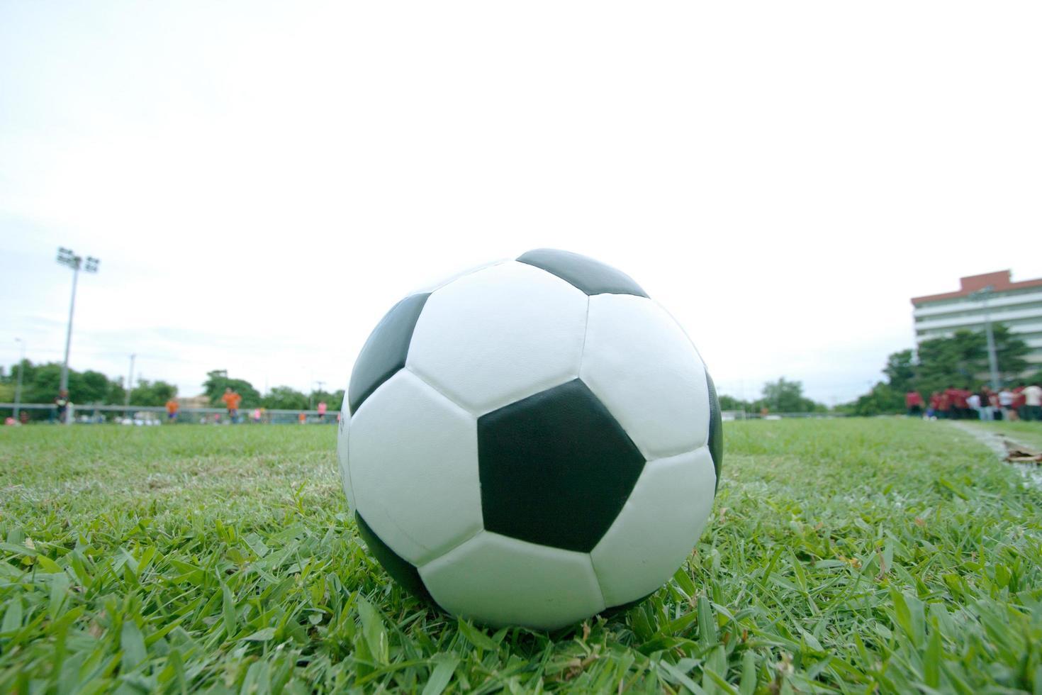 palla sull'erba foto