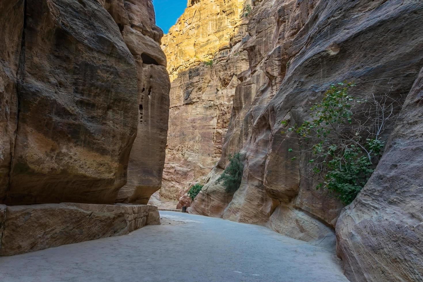al siq gorge nella città antica di petra, giordania foto