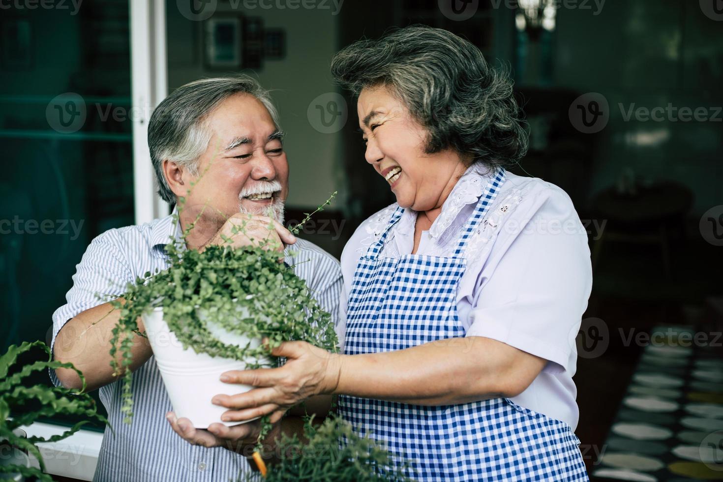 coppia di anziani parlare insieme e piantare alberi in vaso foto