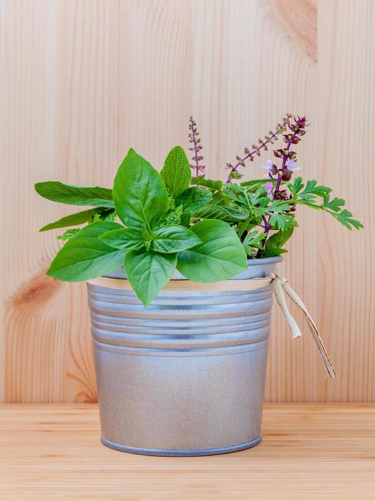 secchio di erbe aromatiche foto
