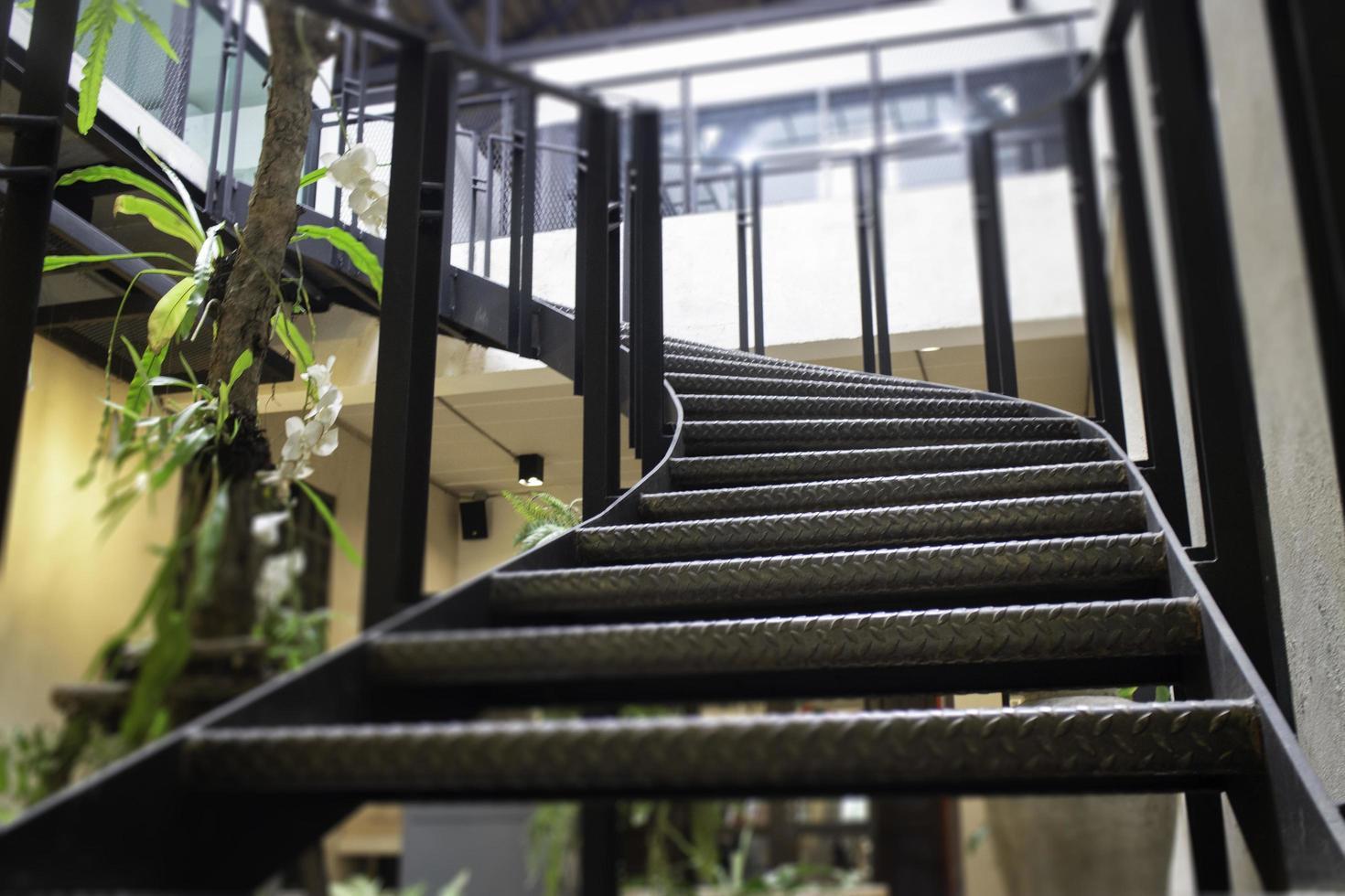 Foglie Verdi Pianta Interno Accogliente Caffetteria foto