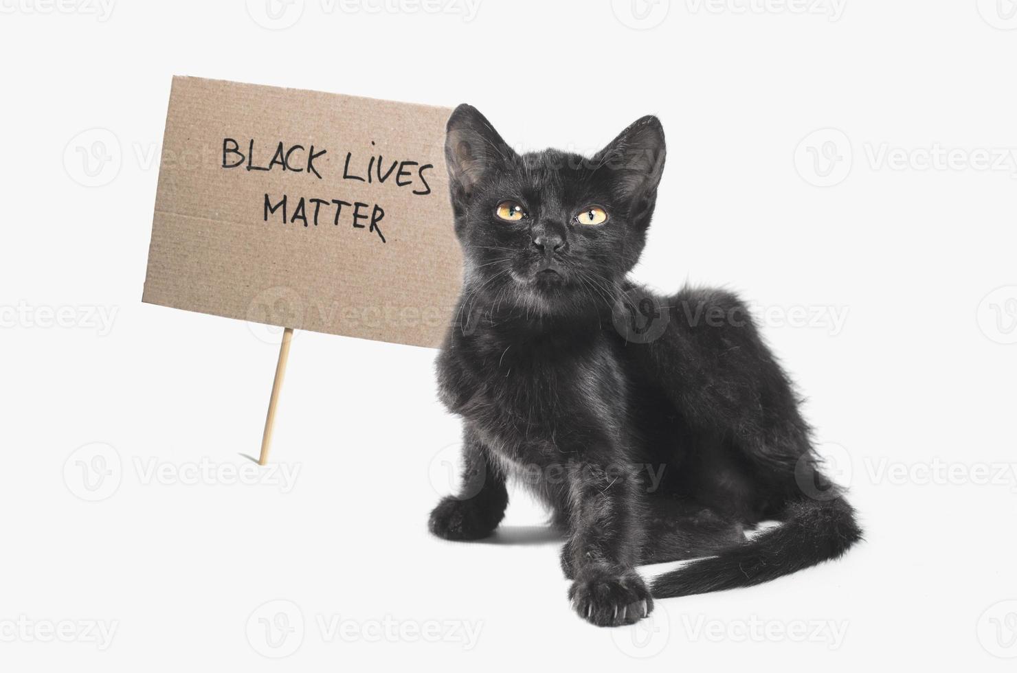 gattino con segno di cartone di materia di vita nera foto
