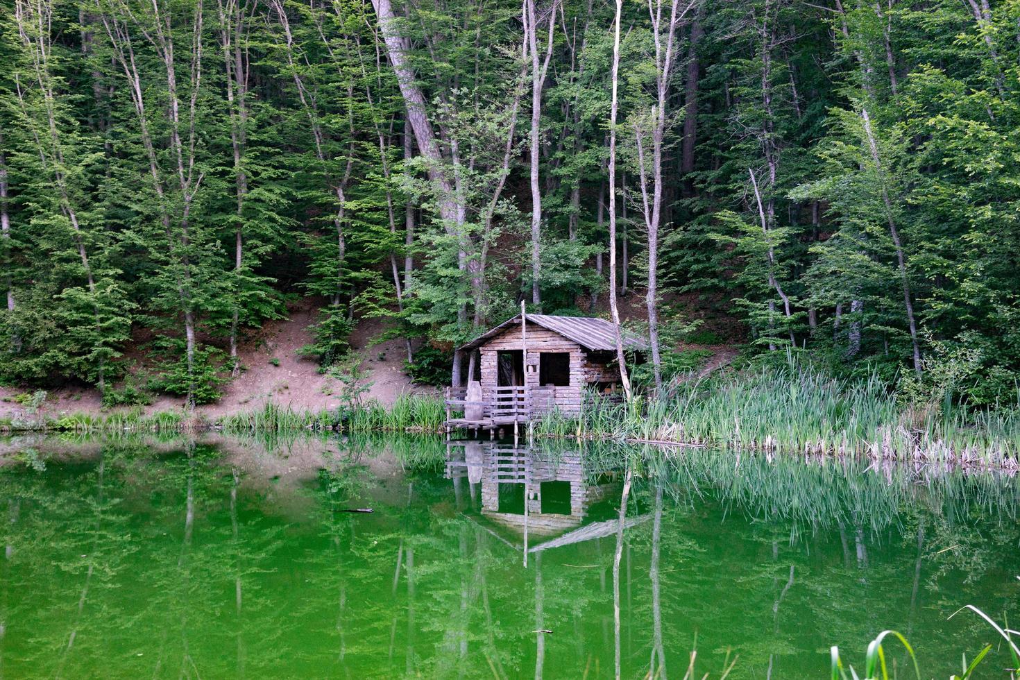 una capanna in riva a un lago circondato da alberi a Yalta, Crimea foto