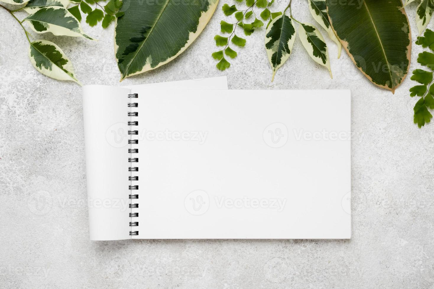 disposizione piatta di belle foglie di piante con il taccuino foto