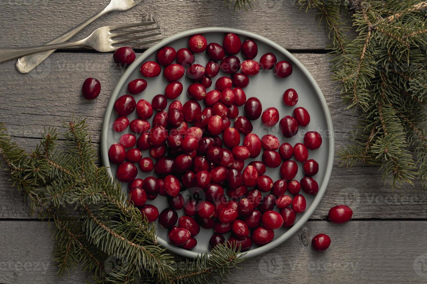 laici piatta di un piatto di mirtilli rossi con pino e forchette foto