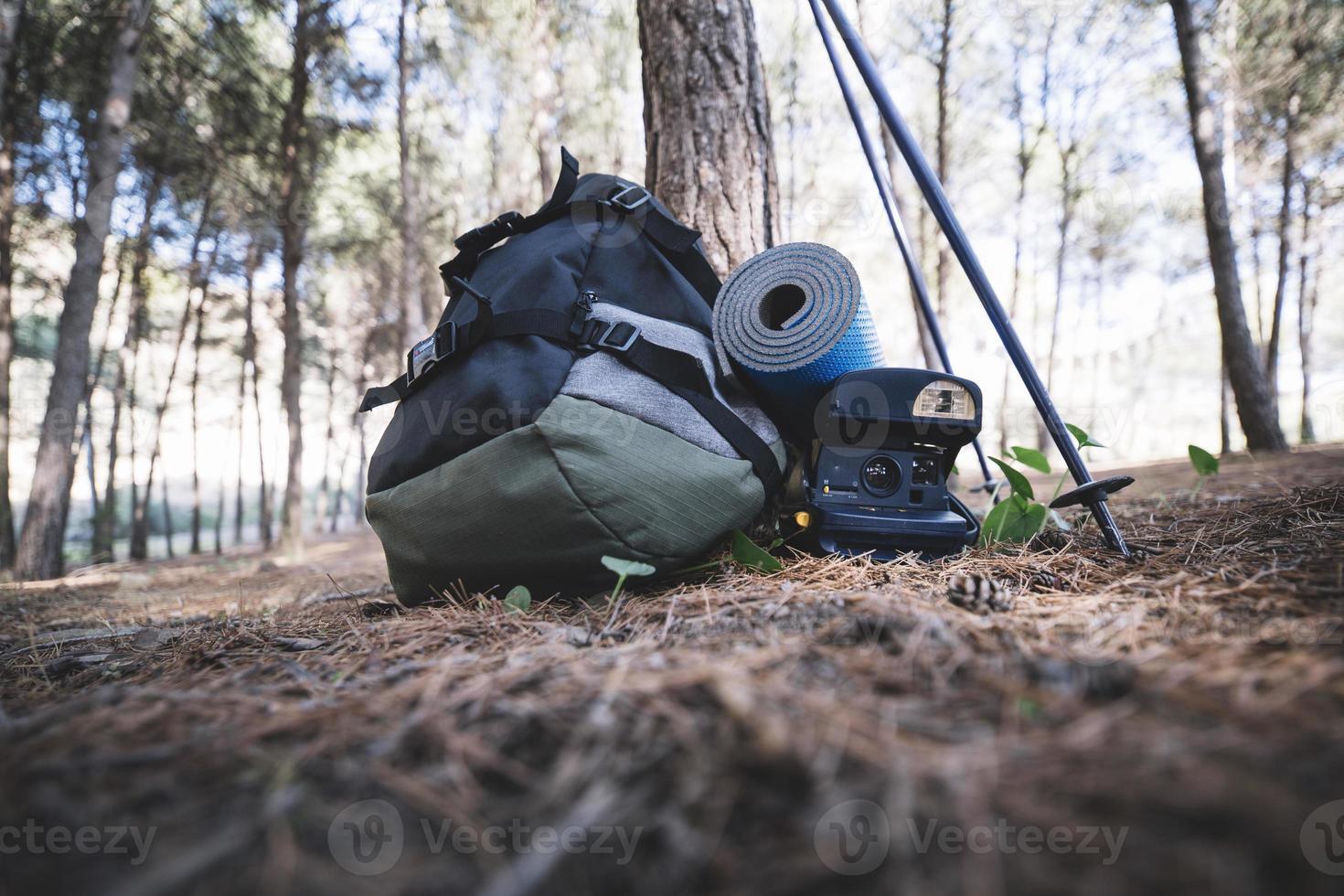 zaino con la macchina fotografica vicino all'albero nel bosco foto
