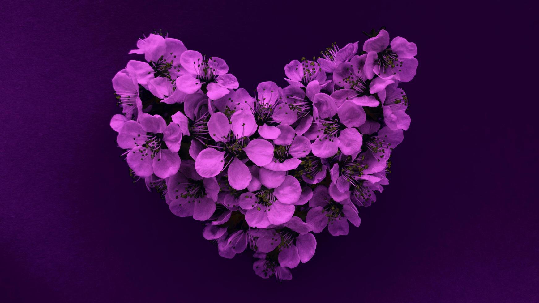 cuore di fiori di susino nei moderni colori viola. può essere utilizzato come banner, cartolina, stampa di immagini, design di inviti. foto d'archivio.