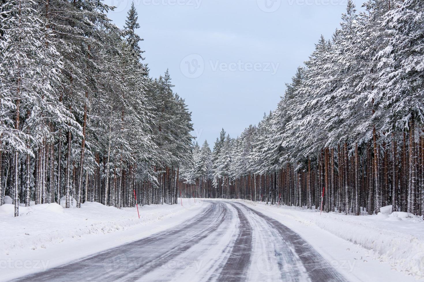 strada in un paesaggio invernale foto