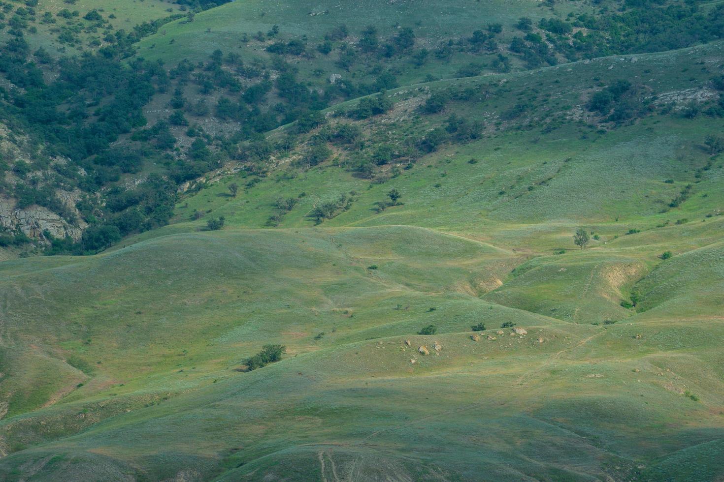 paesaggio naturale con vista sulle montagne foto