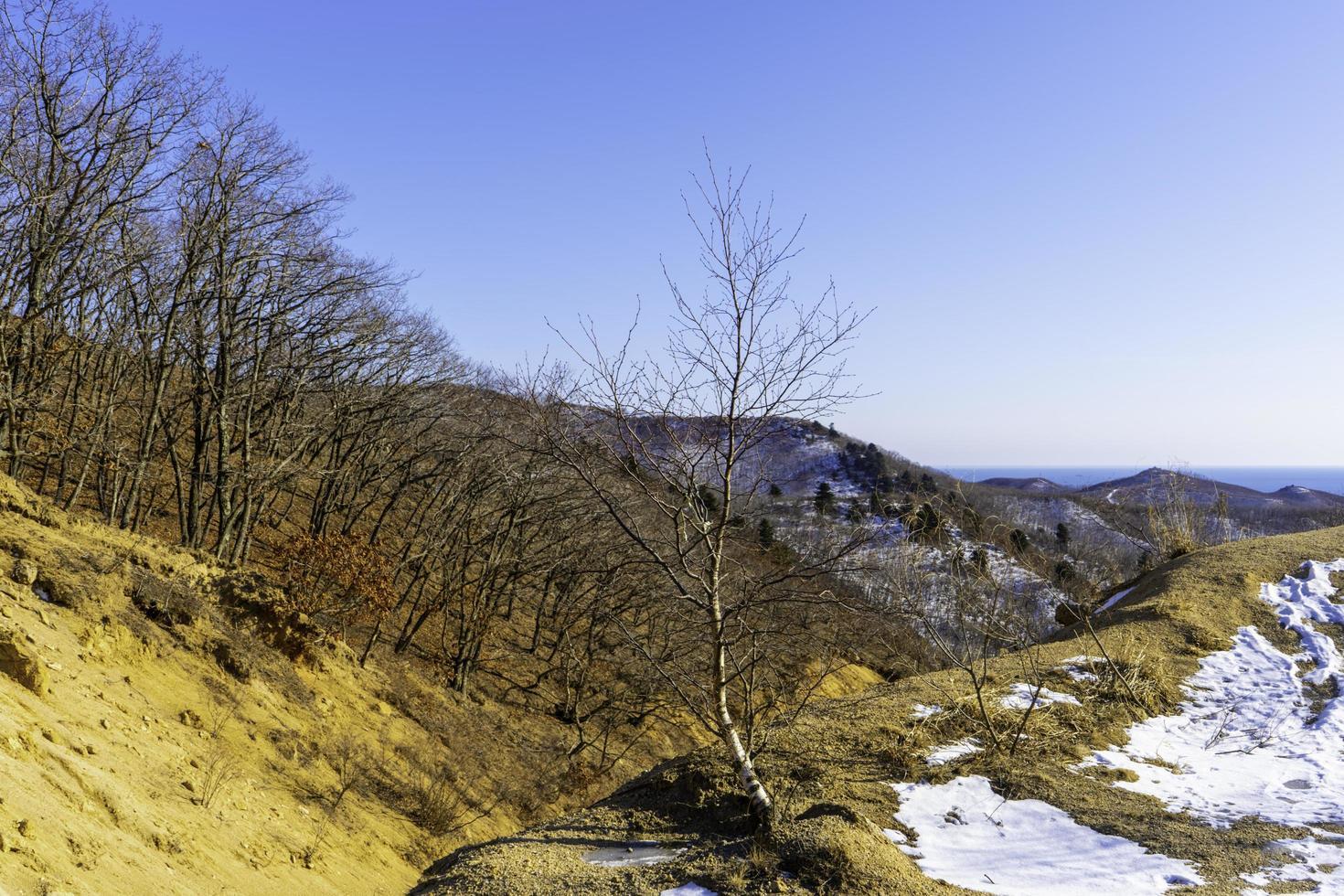 paesaggio di montagna con vista mare all'orizzonte foto