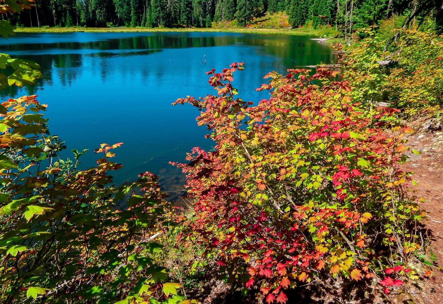 inizio dell'autunno al lago parrish - gamma a cascata - o foto