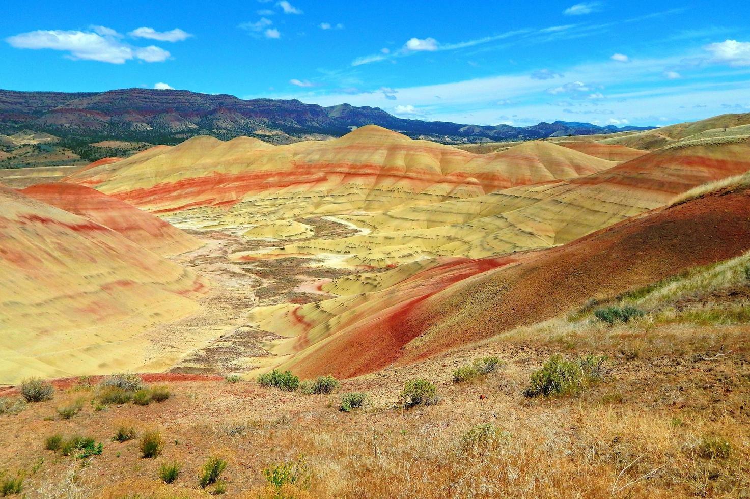 colori del deserto - colline dipinte - monumento nazionale dei letti fossili di john day - vicino a mitchell, or foto
