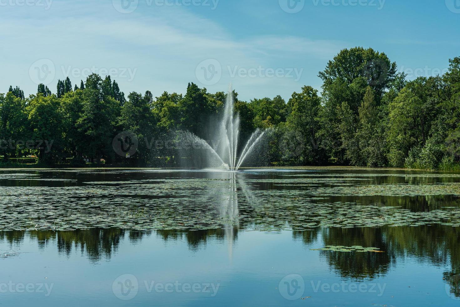 fontana che spruzza acqua in uno stagno foto
