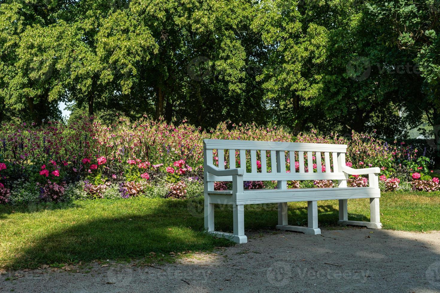 panchina del parco bianco davanti a fiori foto