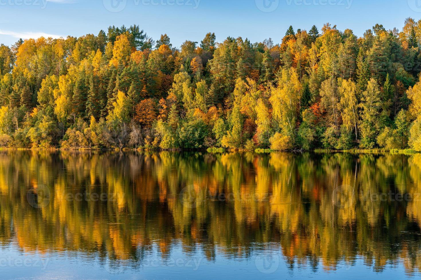 alberi colorati autunnali lungo un fiume incandescente alla luce del sole foto
