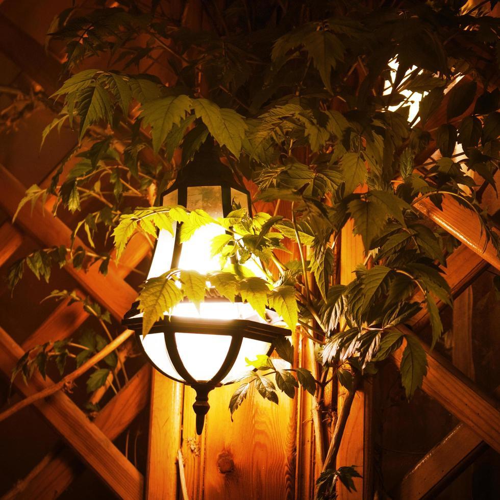 lanterna gialla sullo sfondo del muro e delle foglie foto