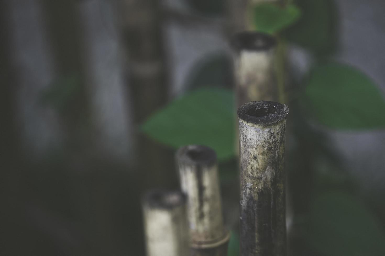 sfondo naturale con dettagli in bambù foto