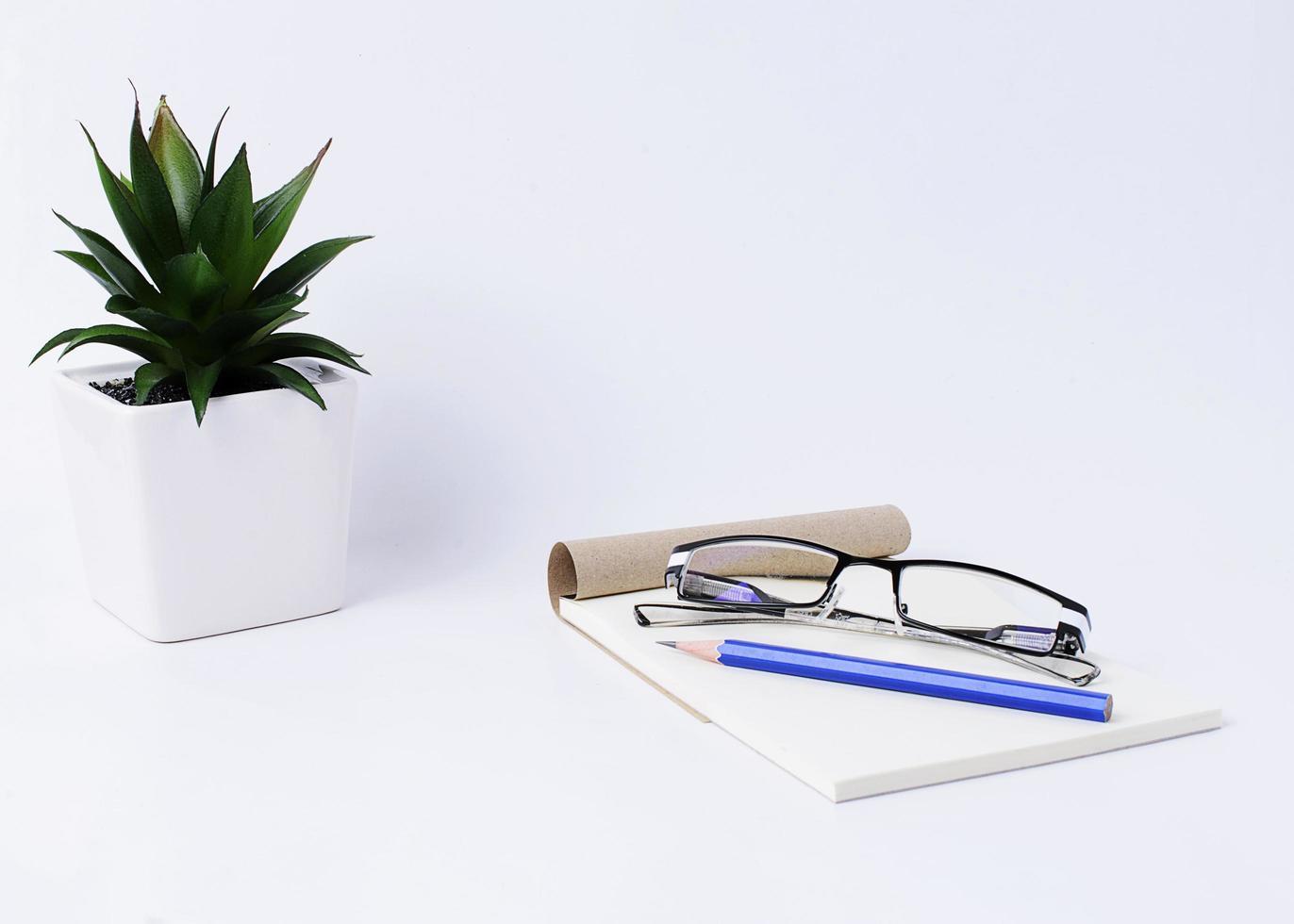 matita blu con occhiali su blocco note e vaso di fiori su sfondo bianco foto