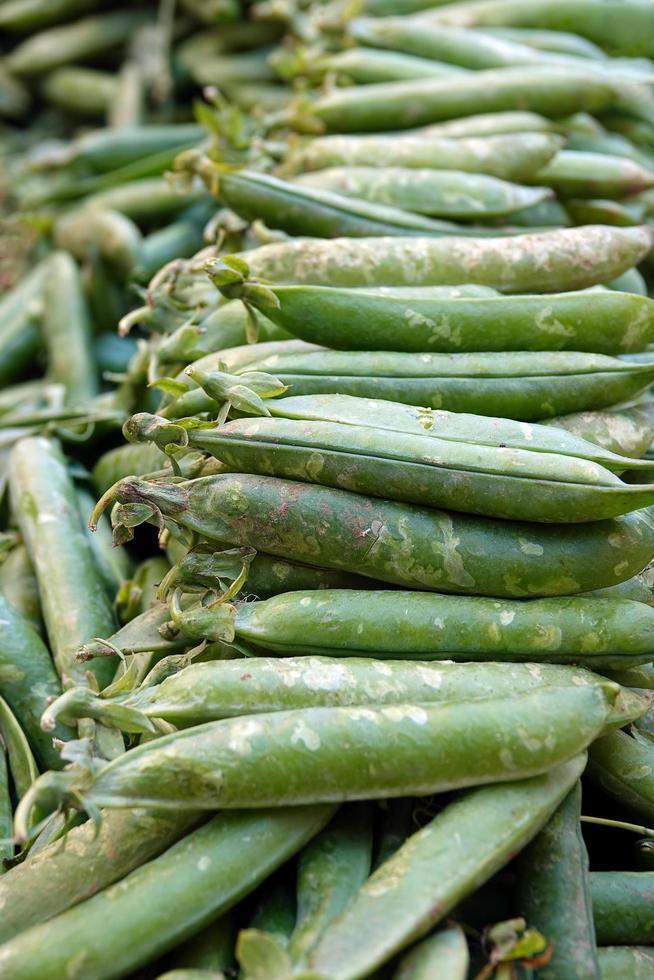 pisello vegetale crudo biologico foto