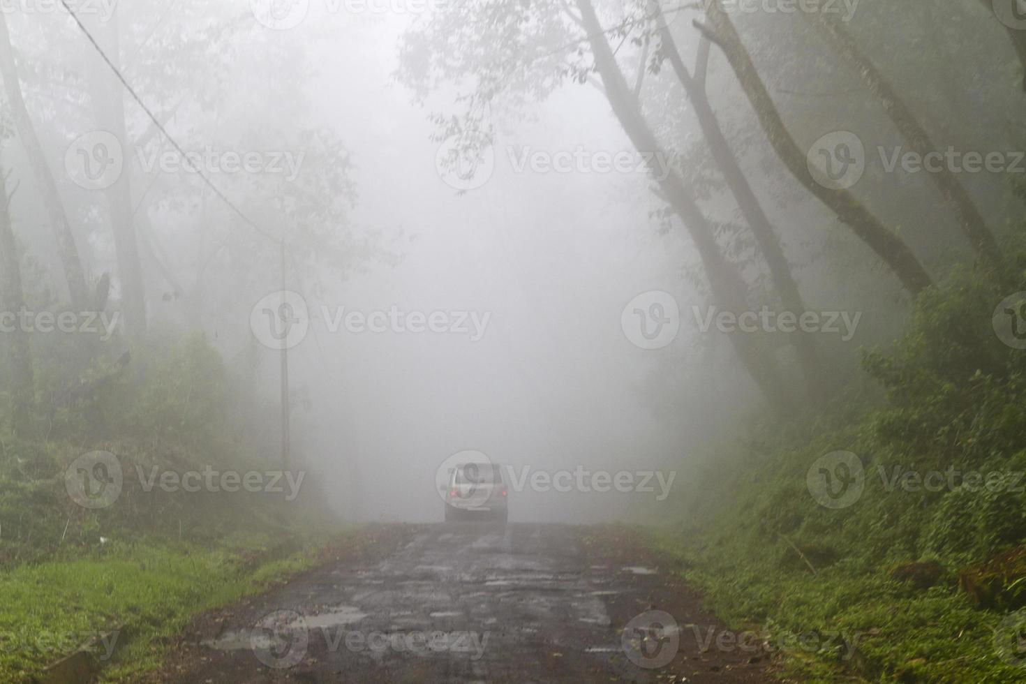 pista nebbiosa nella giungla foto