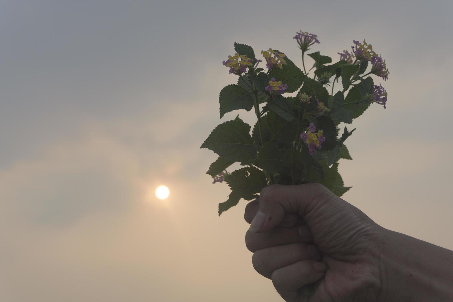 vista di un uomo che porge dei fiori foto