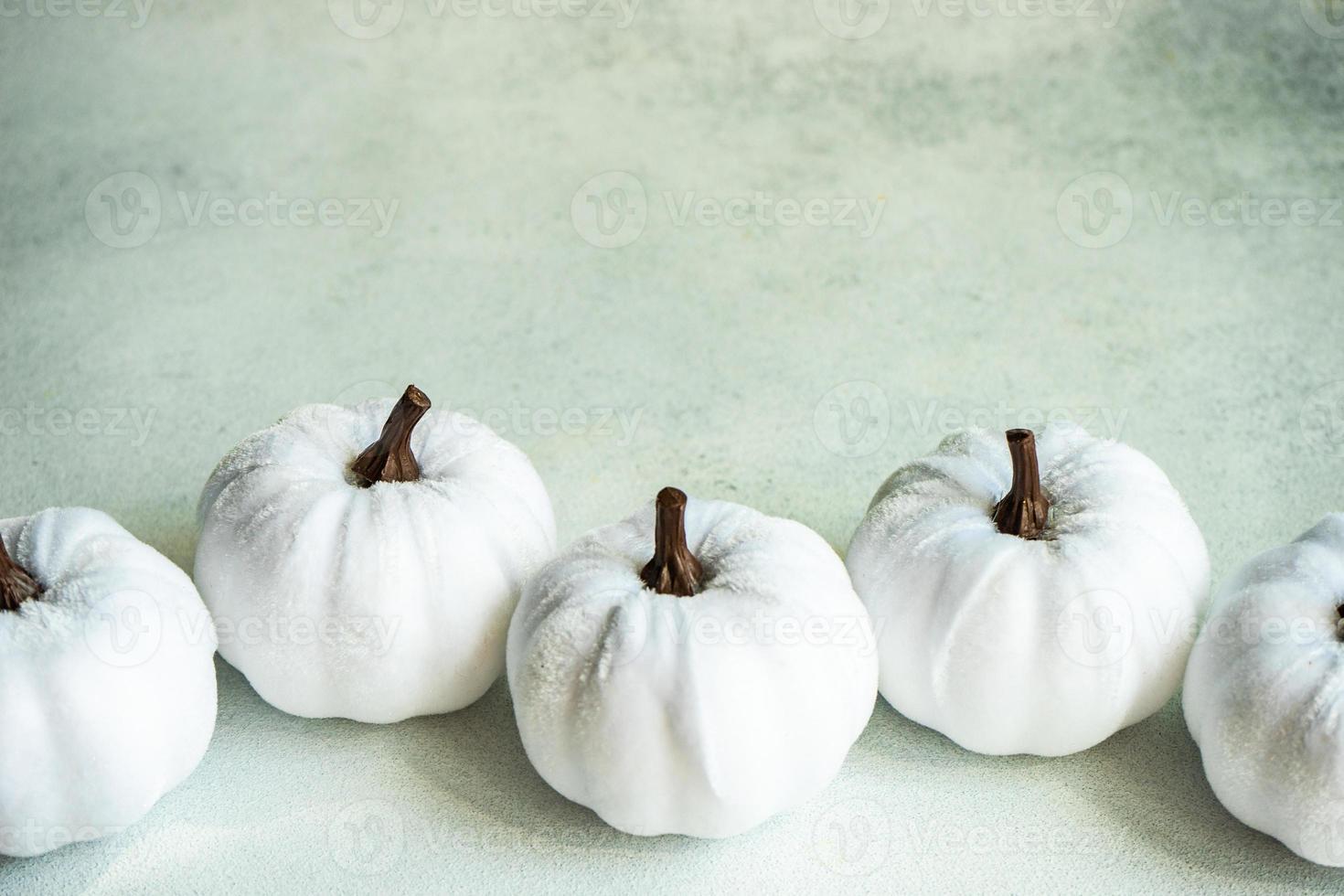 zucche tessili bianche fatte a mano come biglietto di ringraziamento foto