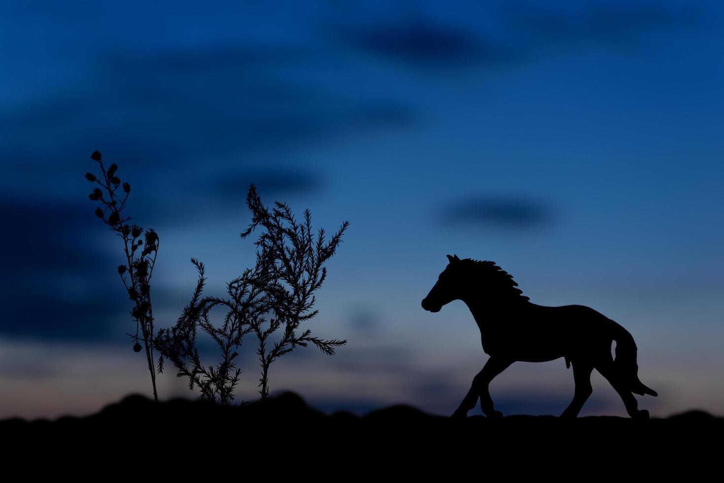 sagoma di cavallo giocattolo al tramonto sullo sfondo foto