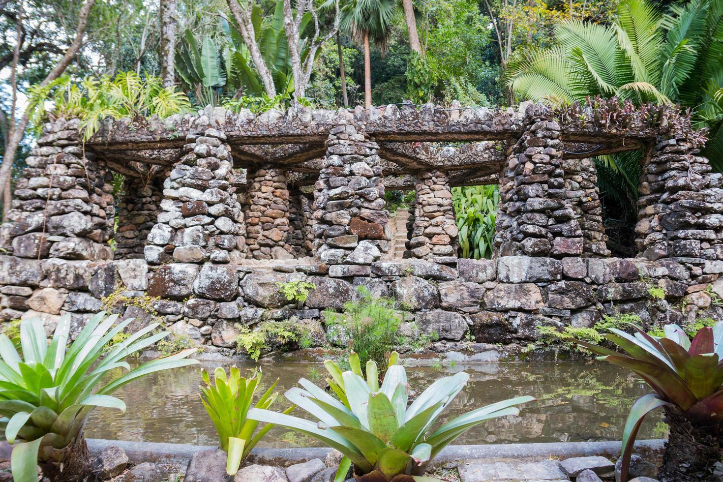 rio de janeiro, brasile, 2015 - vista sul giardino botanico foto