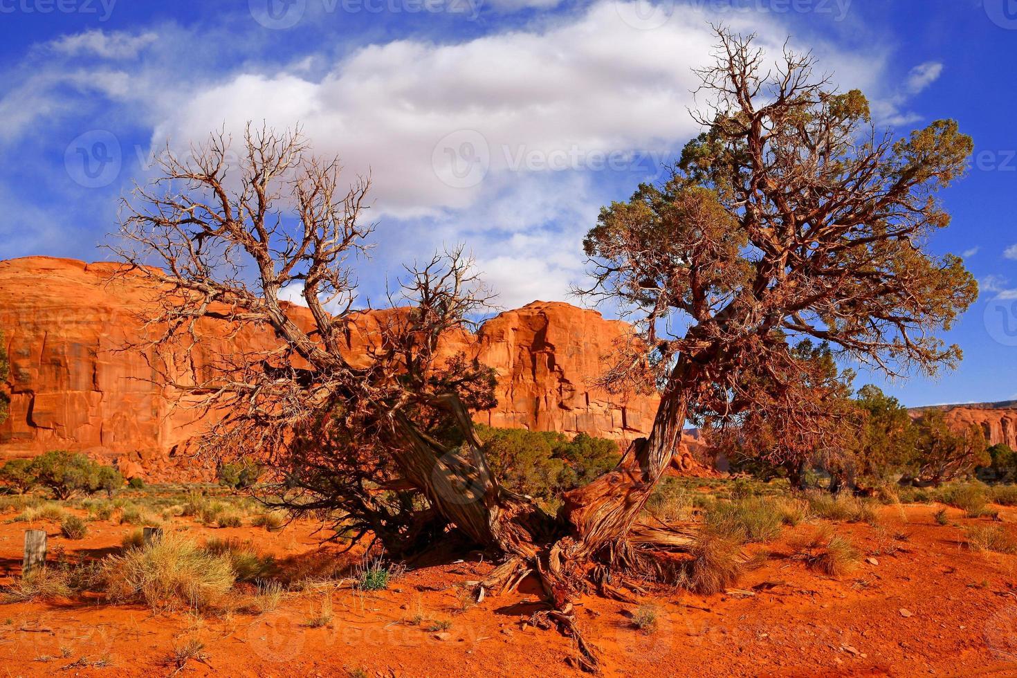 paesaggio desertico della Monument Valley foto