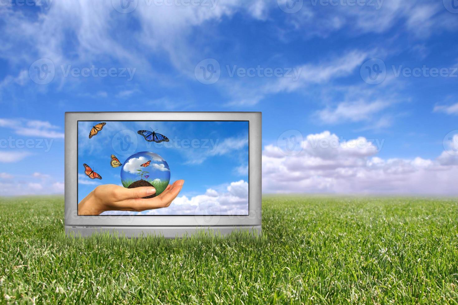 bellissimo campo di erba verde e blu cielo nuvoloso concetto di terra foto