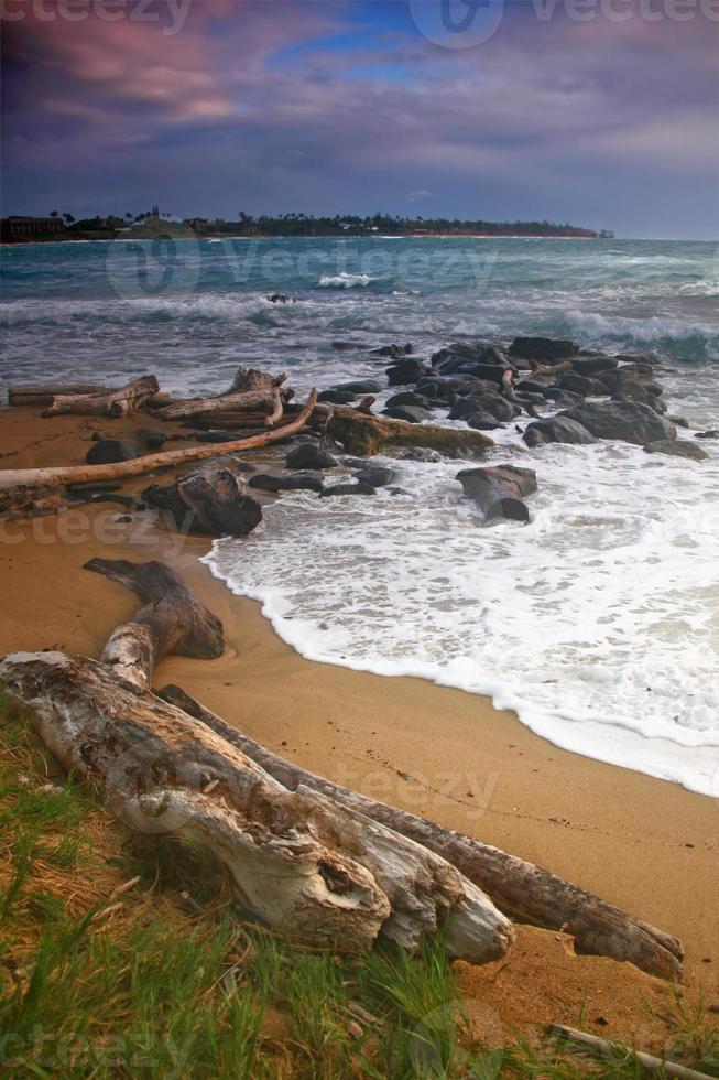 paesaggio verticale di una spiaggia alle hawaii foto