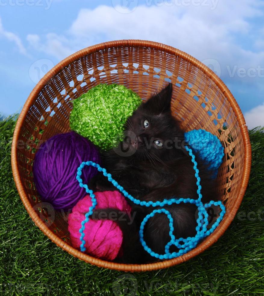 adorabile gattino in una custodia piena di filato foto