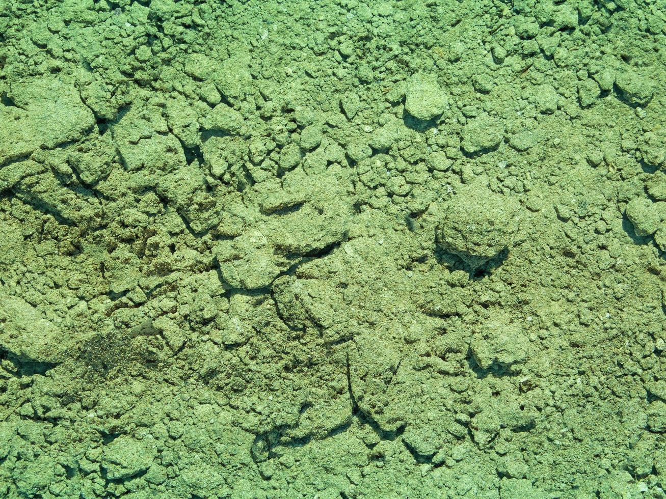 trama del terreno verde acqua foto