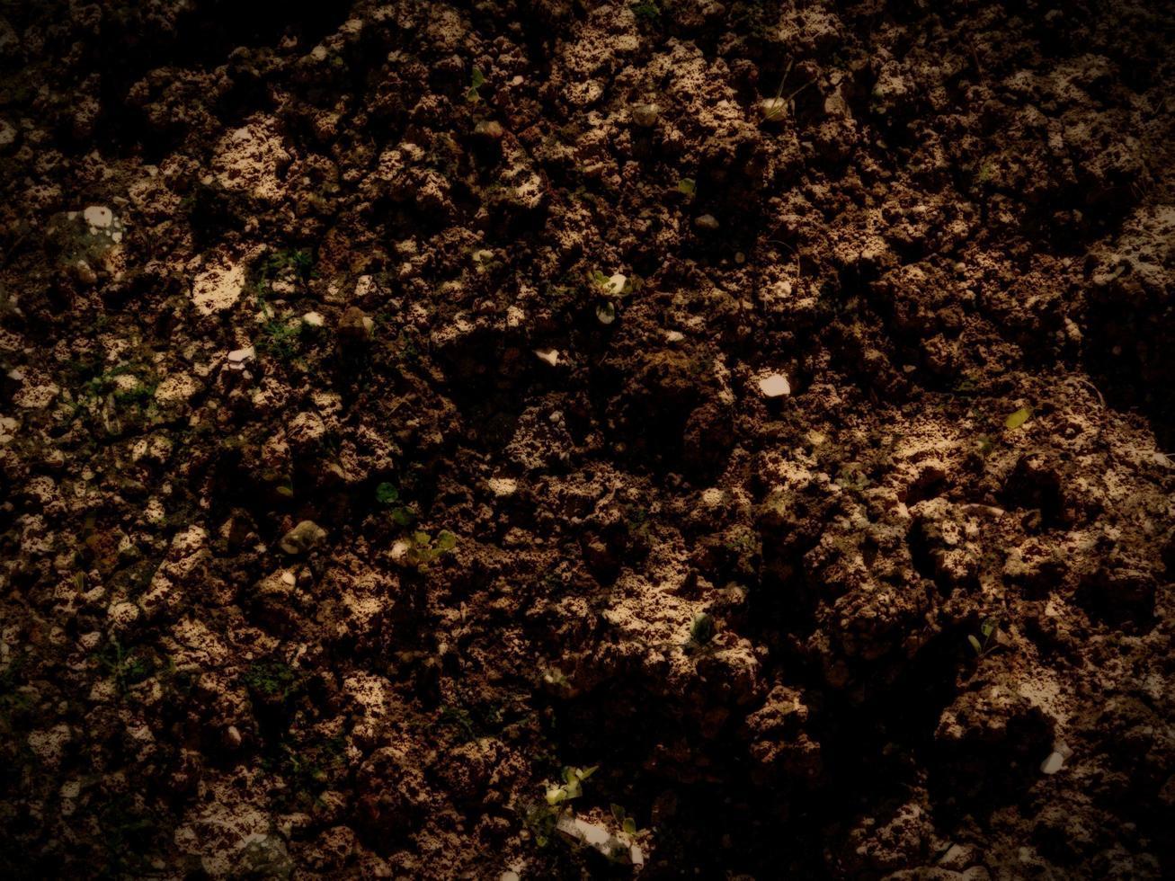 trama della terra scura foto