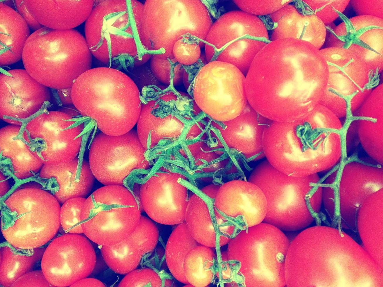 pomodoro all'aperto in giardino foto