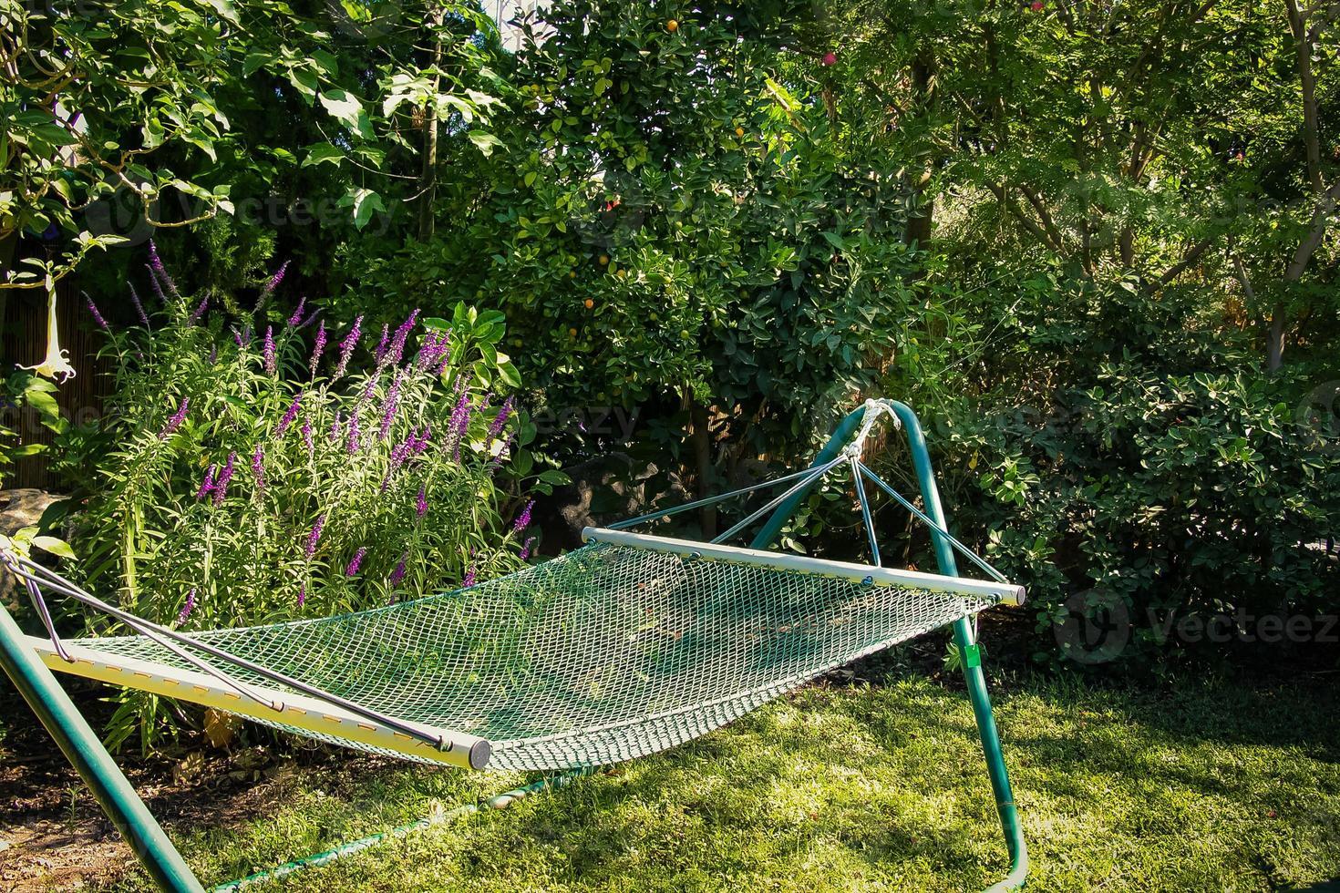 amaca in giardino verde foto