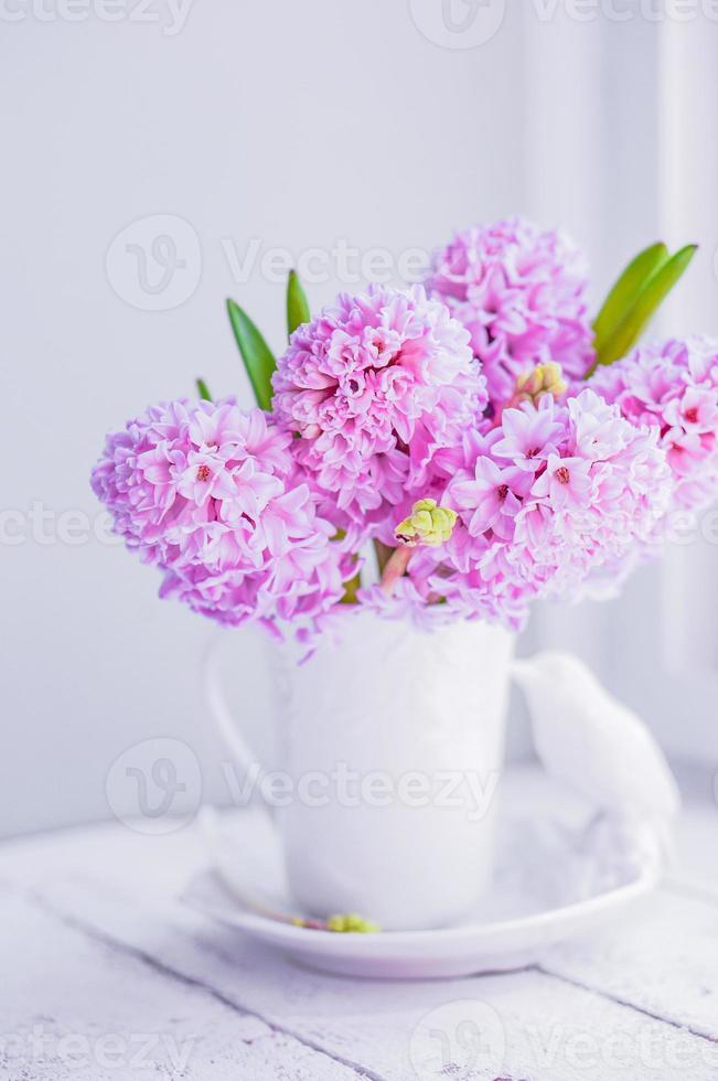 giacinti rosa in vaso bianco su sfondo bianco foto