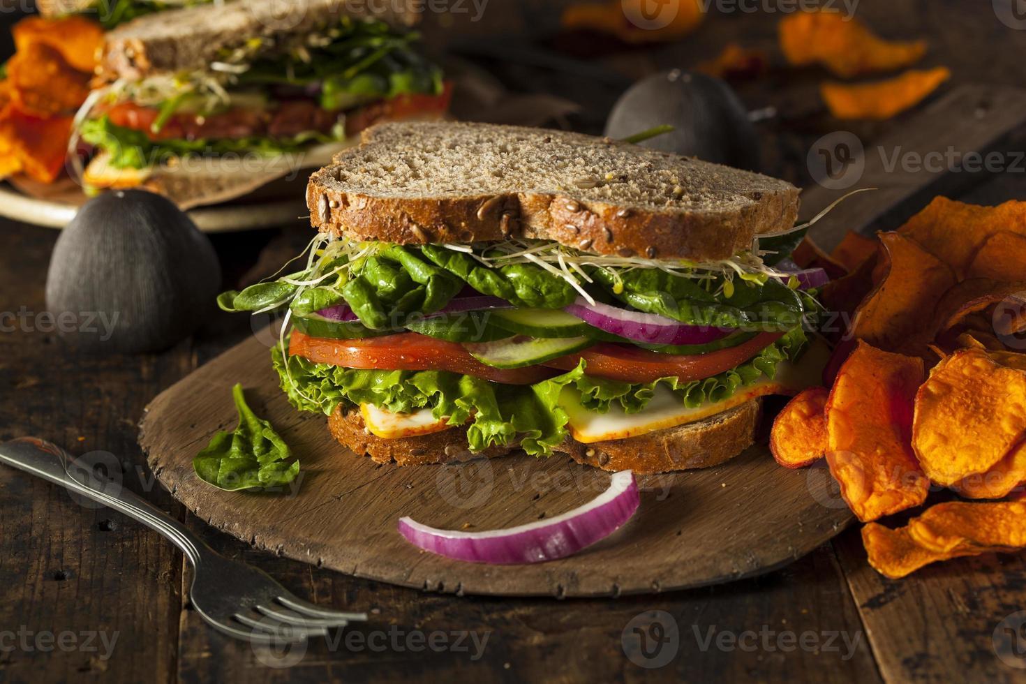 panino vegetariano vegetariano sano foto