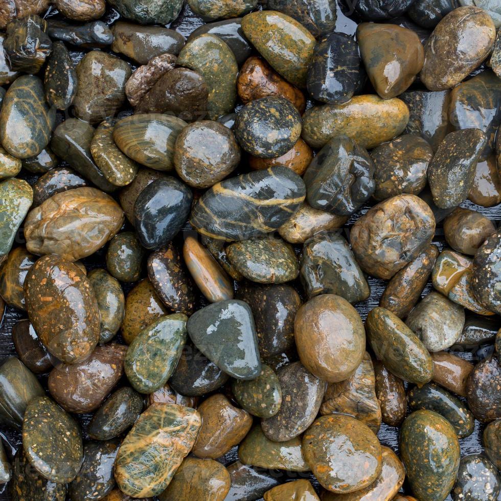 rocce bagnate foto