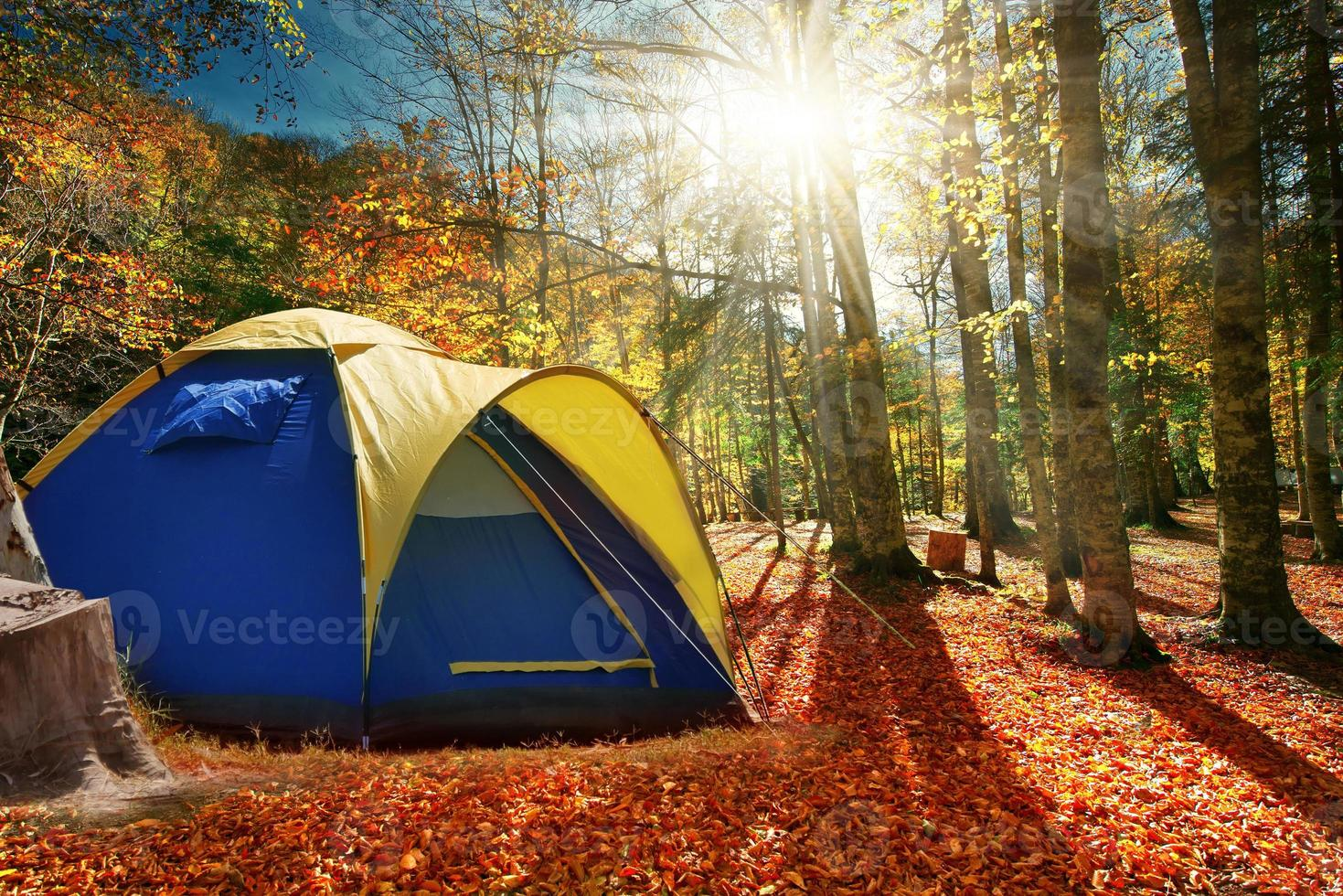 due tende nella foresta d'autunno foto