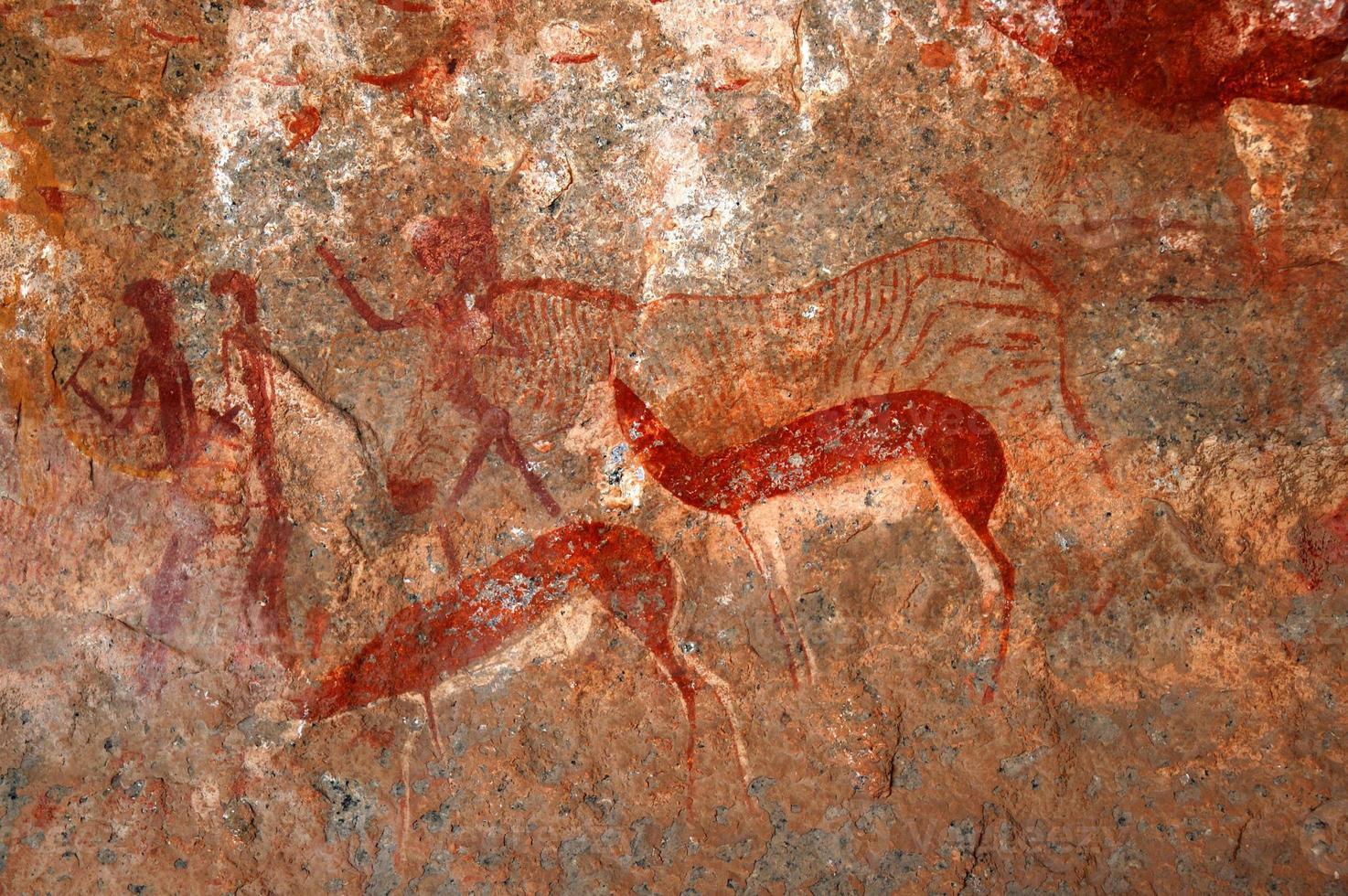 boscimani dipinti e arte rupestre foto