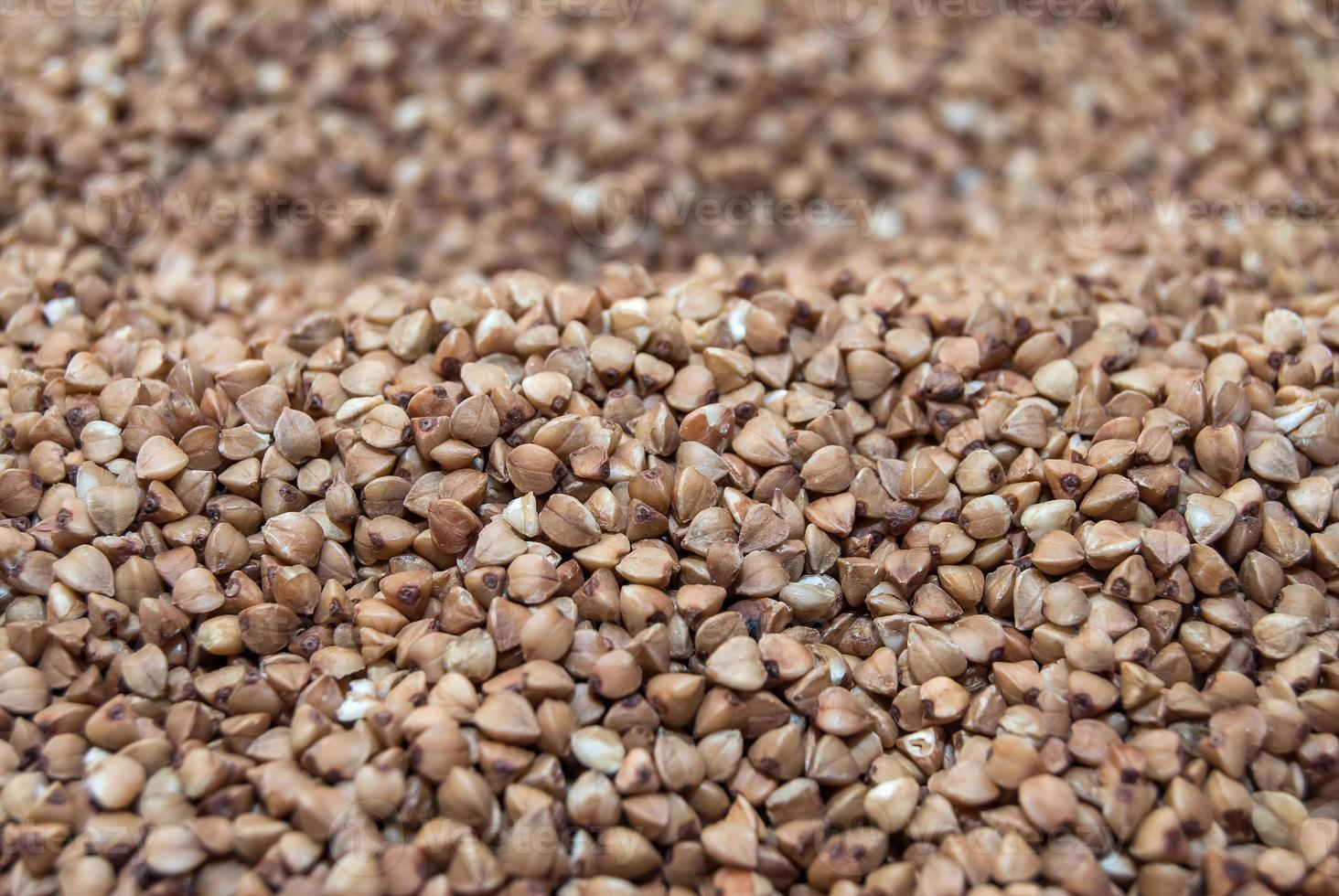 consistenza cruda di grano saraceno foto