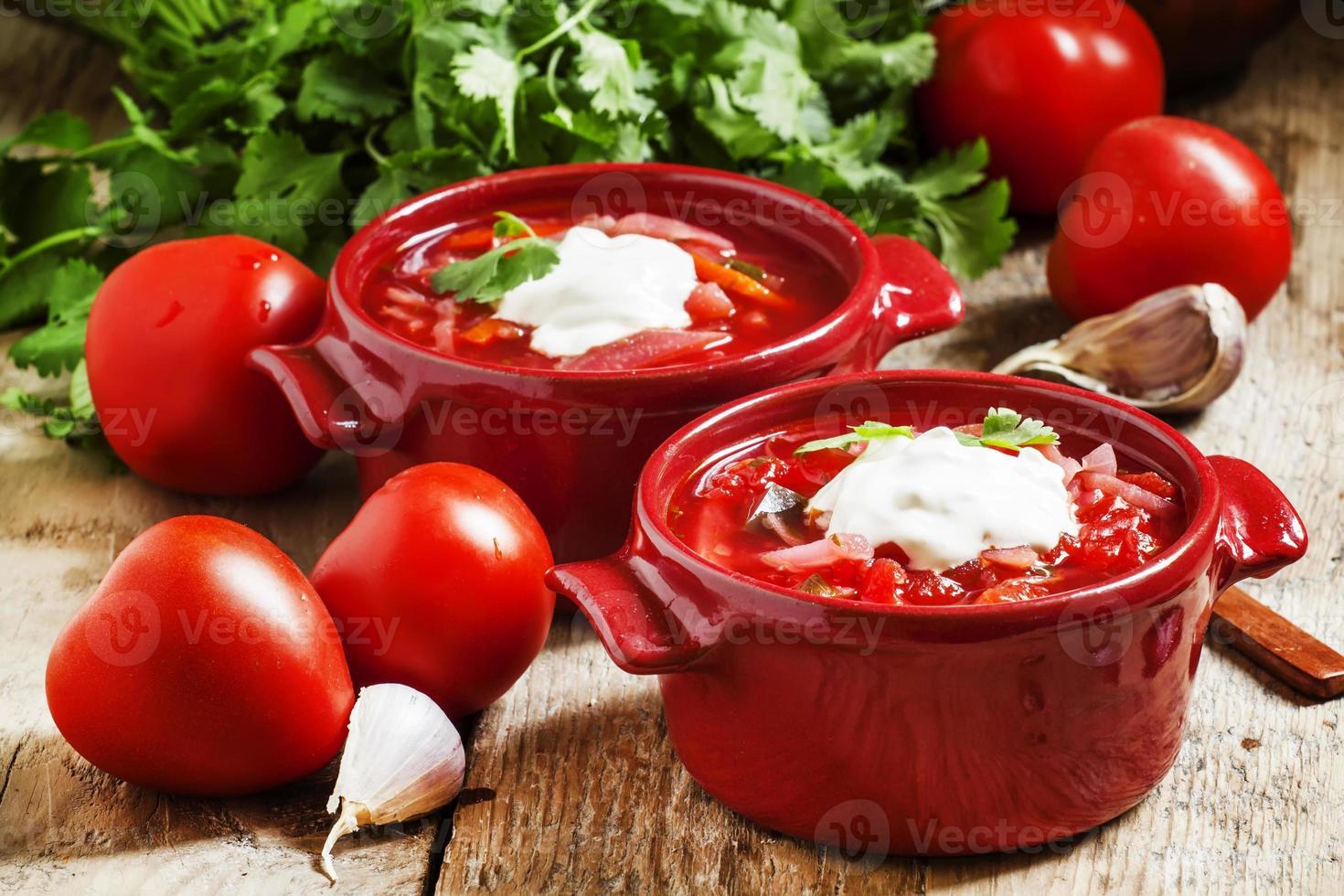 zuppa di verdure ucraina russa tradizionale foto