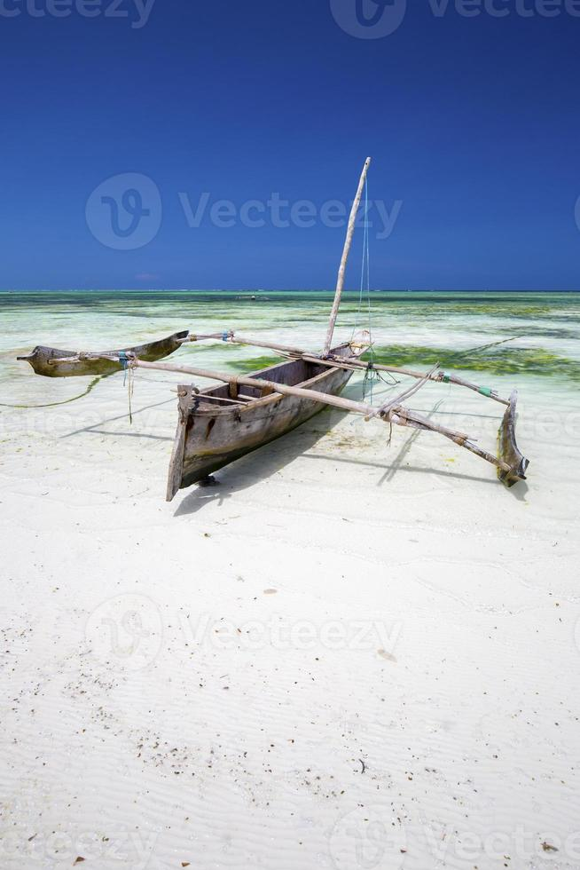 Dongwe a Zanzibar. foto