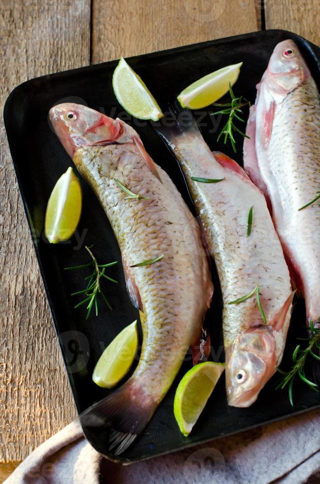 pesce fresco con limone e rosmarino foto