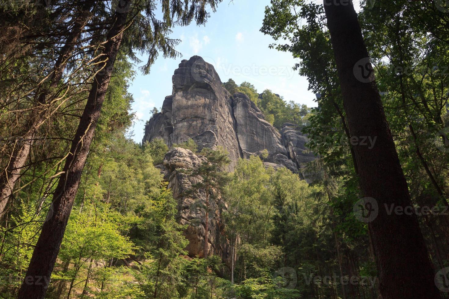 rock schrammsteine in sassone svizzera foto