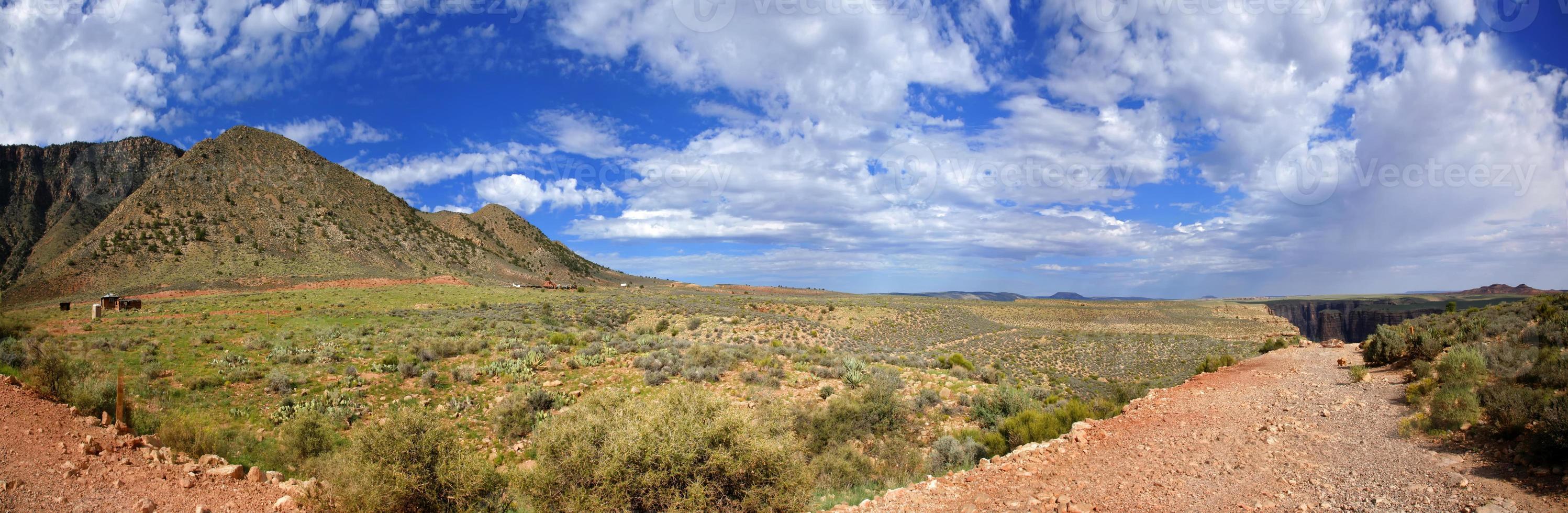 deserto dell'Arizona - Stati Uniti foto