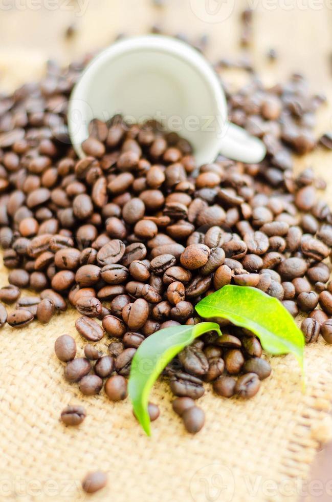 chicchi di caffè con tazza bianca e foglie verdi foto