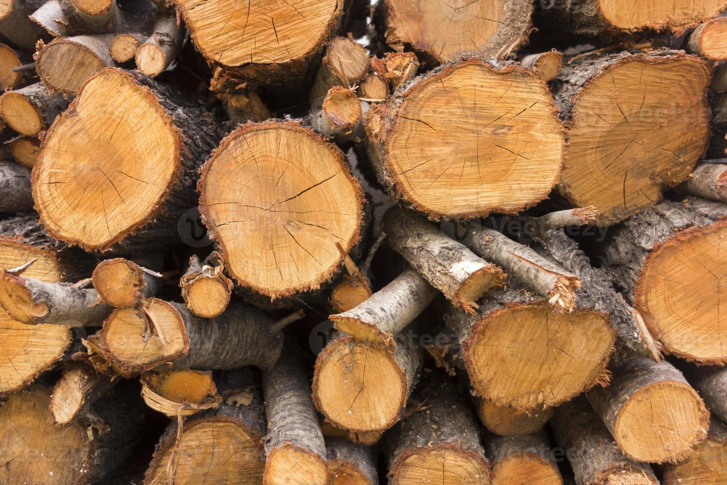 stock di legna da ardere per l'inverno foto